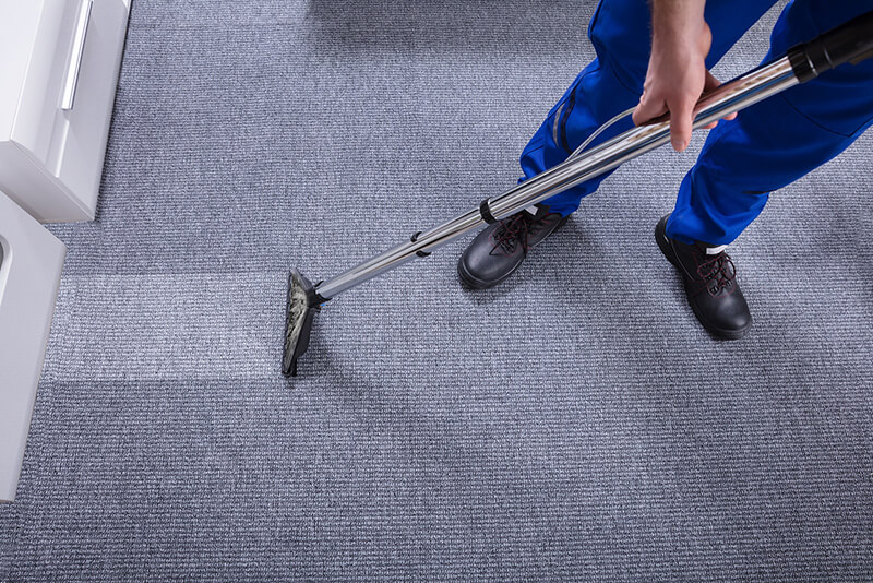 carpet cleaning pascagoula