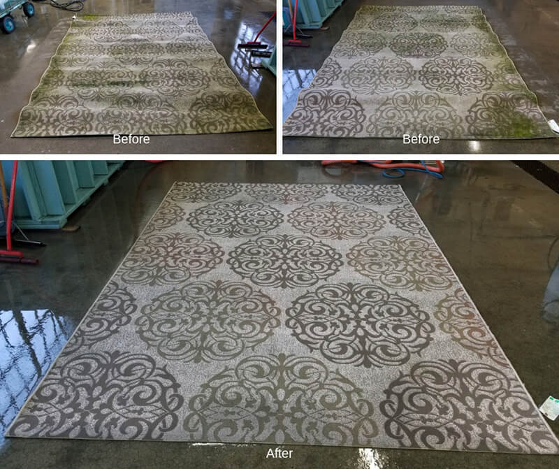 rug cleaning pascagoula